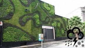 1448064661_green_wall_mexico_city_with_logo