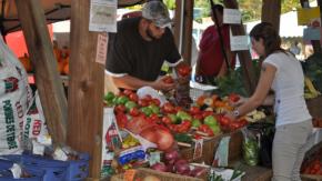 1451401116_fresh_vegetables_at_flint_farmers_market_open_all_year_round_in_flint_michigan_by_michigan_municipal_league